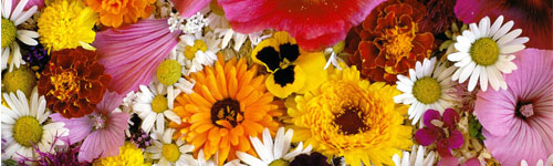 Çiçek Falı
